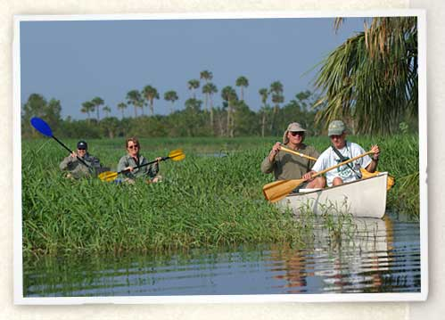 Photo of kayakers exploring the St. Johns River